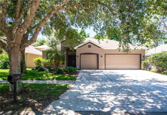 15127 Shearcrest Drive, Lithia, FL 33547 (MLS #T3169171) :: Medway Realty