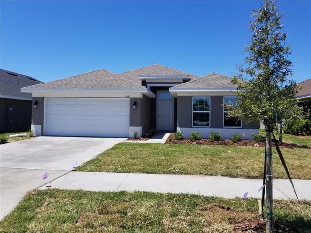 14511 Callen Glen Way, Wimauma, FL 33598 (MLS #T3169202) :: Team Bohannon Keller Williams, Tampa Properties