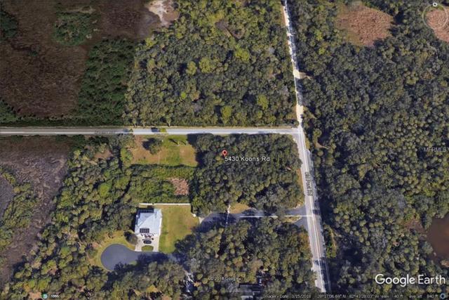 5430 Koons Drive, Port Richey, FL 34668 (MLS #T3169211) :: The Duncan Duo Team