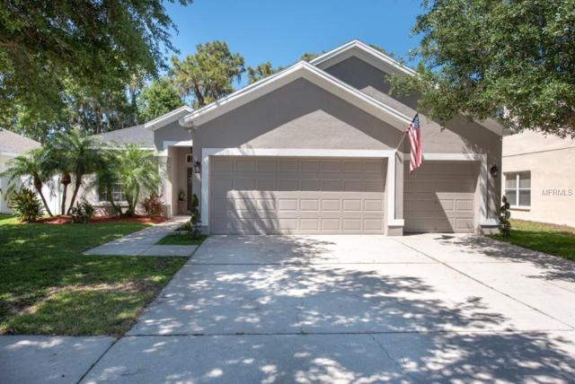 12812 Cattail Shore Lane, Riverview, FL 33579 (MLS #T3169233) :: NewHomePrograms.com LLC