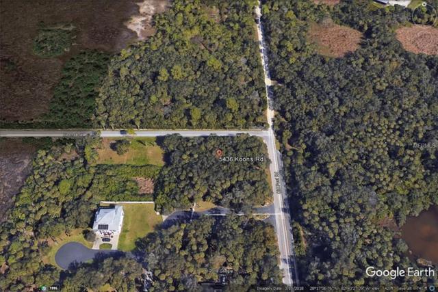 5436 Koons Drive, Port Richey, FL 34668 (MLS #T3169234) :: The Duncan Duo Team