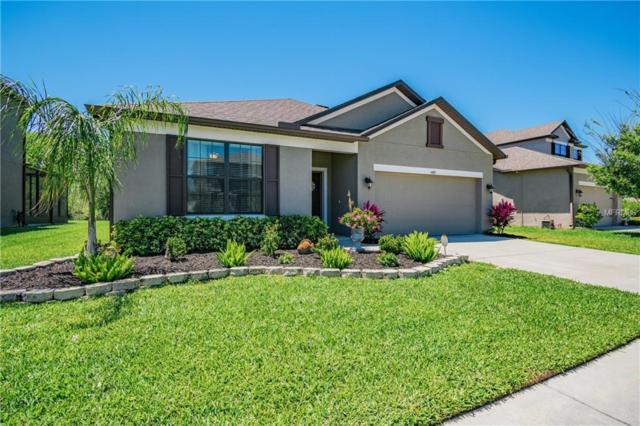 5475 Angelonia Terrace, Land O Lakes, FL 34639 (MLS #T3169284) :: Team Bohannon Keller Williams, Tampa Properties