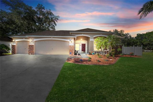4010 Canter Court, Valrico, FL 33596 (MLS #T3169332) :: Griffin Group