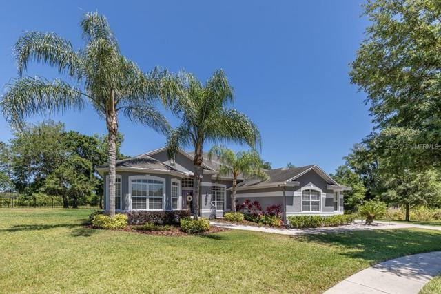 2208 Queen Jessica Drive, Lutz, FL 33549 (MLS #T3169333) :: Cartwright Realty