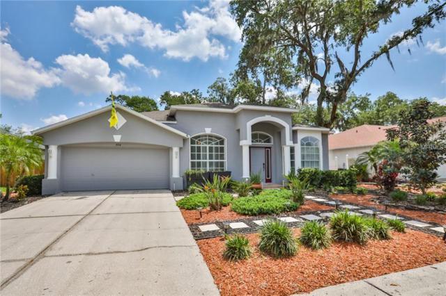 3714 Eaglewood Street, Valrico, FL 33596 (MLS #T3169353) :: Griffin Group