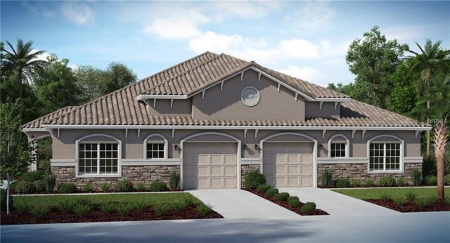 29962 Yamuna Way, Wesley Chapel, FL 33543 (MLS #T3169373) :: Cartwright Realty