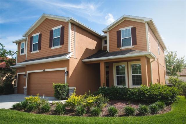 23958 Terracina Court, Land O Lakes, FL 34639 (MLS #T3169388) :: NewHomePrograms.com LLC