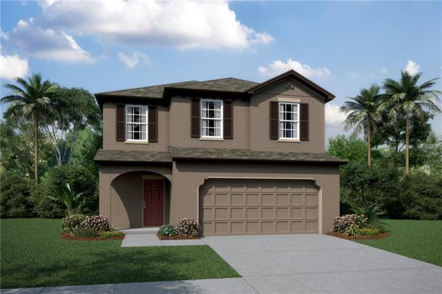 5367 Little Stream Lane #3107, Wesley Chapel, FL 33545 (MLS #T3169410) :: Ideal Florida Real Estate