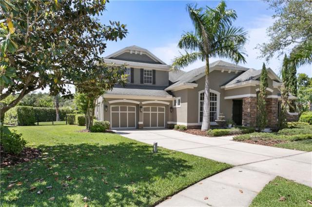 11903 Mandevilla Court, Tampa, FL 33626 (MLS #T3169412) :: Griffin Group