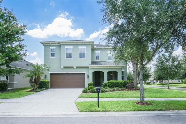 5101 Oakline View Drive, Lithia, FL 33547 (MLS #T3169419) :: Dalton Wade Real Estate Group