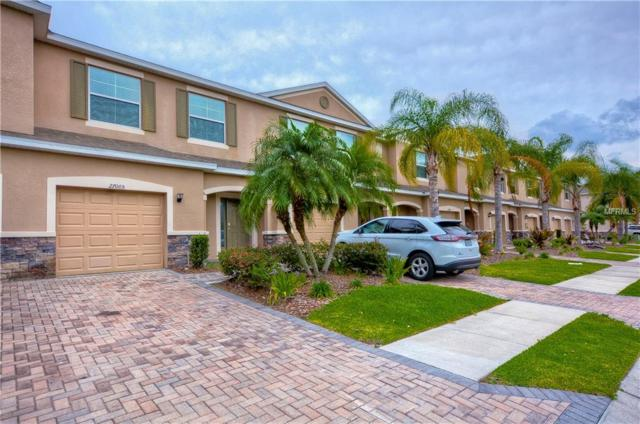 27005 Juniper Bay Drive, Wesley Chapel, FL 33544 (MLS #T3169451) :: Team Bohannon Keller Williams, Tampa Properties