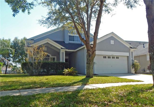 6363 Bridgecrest Drive, Lithia, FL 33547 (MLS #T3169464) :: Medway Realty