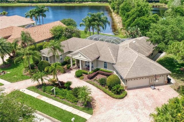 4546 Rutledge Drive, Palm Harbor, FL 34685 (MLS #T3169468) :: Andrew Cherry & Company