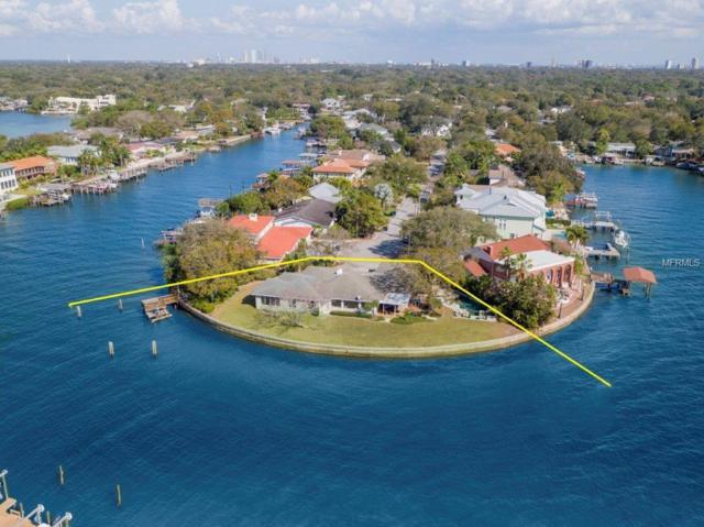 2401 S Dundee Street, Tampa, FL 33629 (MLS #T3169538) :: Cartwright Realty