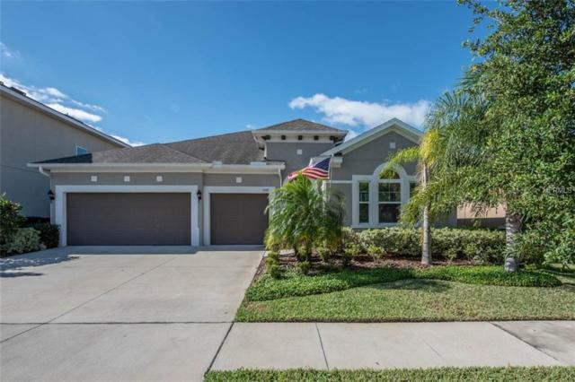 1309 Charleen Street, Brandon, FL 33511 (MLS #T3169544) :: Griffin Group