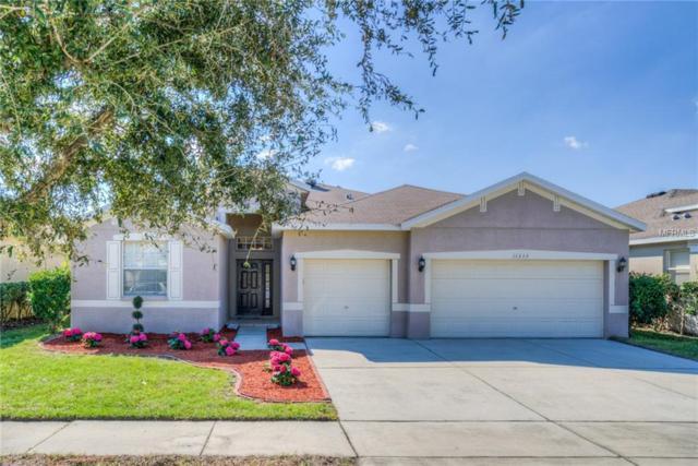 11333 Bridge Pine Drive, Riverview, FL 33569 (MLS #T3169549) :: Homepride Realty Services