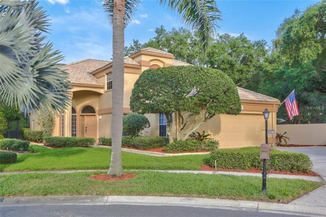 9338 Fairway Lakes Court, Tampa, FL 33647 (MLS #T3169560) :: Team Bohannon Keller Williams, Tampa Properties