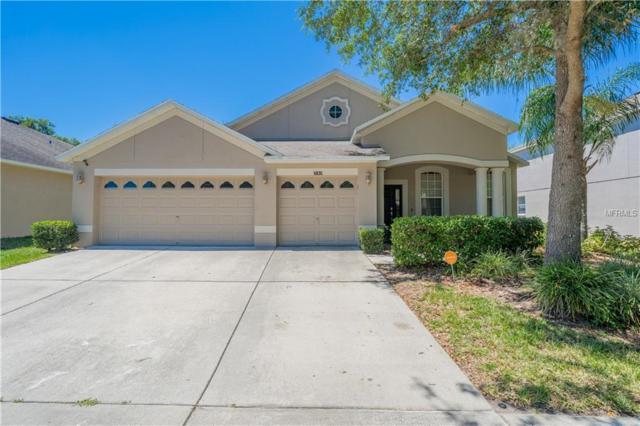 5835 Butterfield St, Riverview, FL 33578 (MLS #T3169587) :: Medway Realty