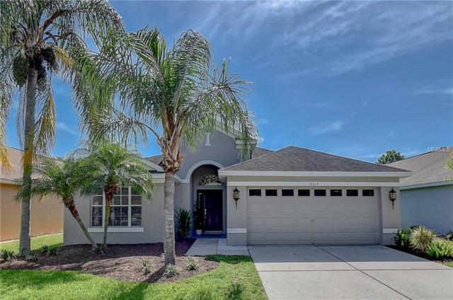 18613 Le Dauphine Place, Lutz, FL 33558 (MLS #T3169590) :: Andrew Cherry & Company