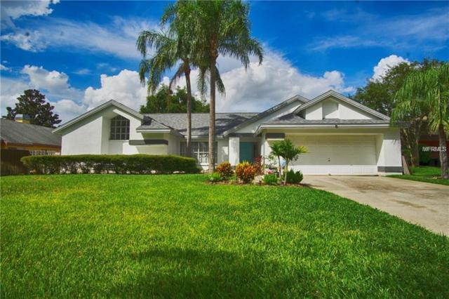 1597 Powder Ridge Drive, Palm Harbor, FL 34683 (MLS #T3169613) :: Delgado Home Team at Keller Williams