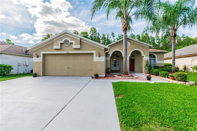 1501 Baythorn Drive, Wesley Chapel, FL 33543 (MLS #T3169640) :: Team Bohannon Keller Williams, Tampa Properties