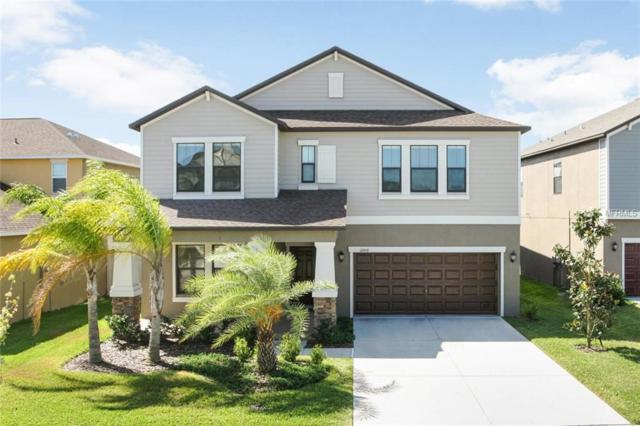 11007 Purple Martin Boulevard, Riverview, FL 33579 (MLS #T3169668) :: Delgado Home Team at Keller Williams