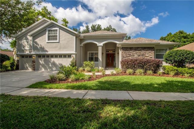 4317 Faircourt Drive, Valrico, FL 33596 (MLS #T3169706) :: Griffin Group