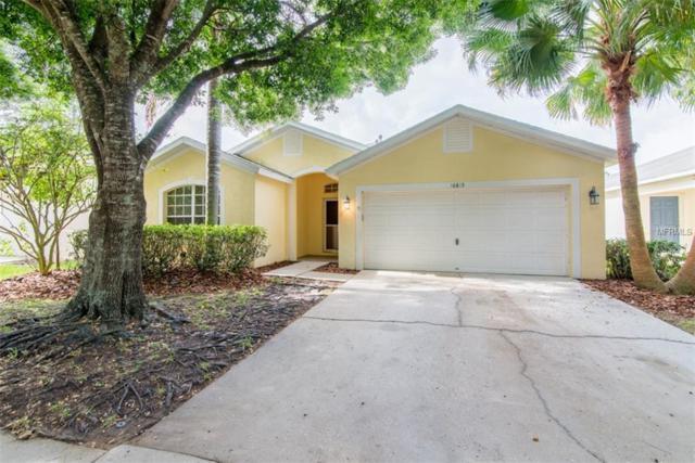 16815 Hawkglen Place, Lithia, FL 33547 (MLS #T3169752) :: Dalton Wade Real Estate Group