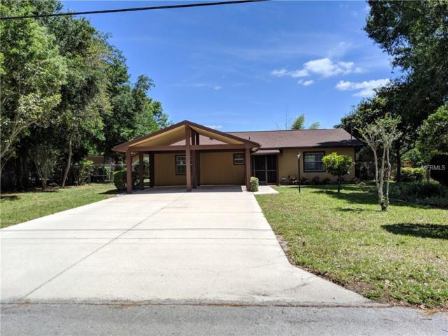 16117 E Lake Burrell Drive, Lutz, FL 33549 (MLS #T3169756) :: Team Bohannon Keller Williams, Tampa Properties