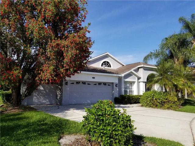 10410 Riverburn Drive, Tampa, FL 33647 (MLS #T3169765) :: Team Bohannon Keller Williams, Tampa Properties