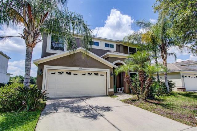 18216 Saltwater Run Place, Tampa, FL 33647 (MLS #T3169774) :: Dalton Wade Real Estate Group