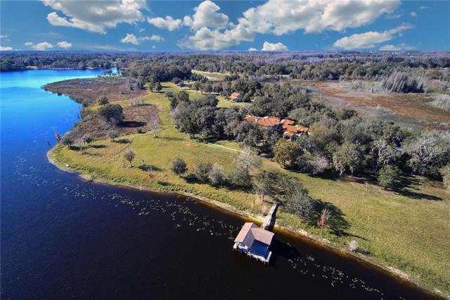 531 E County Line Road, Lutz, FL 33549 (MLS #T3169807) :: Delta Realty Int