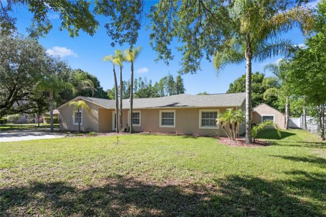 5309 Rawls Road, Tampa, FL 33625 (MLS #T3169810) :: GO Realty