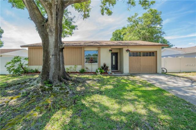 13827 Pathfinder Drive, Tampa, FL 33625 (MLS #T3169841) :: Team Bohannon Keller Williams, Tampa Properties