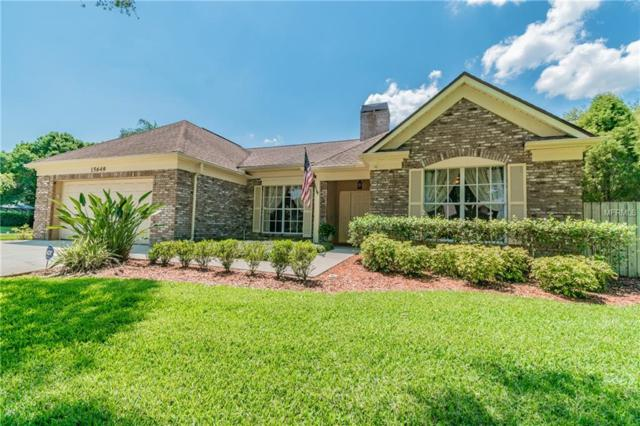 15649 Indian Queen Drive, Odessa, FL 33556 (MLS #T3169882) :: Griffin Group