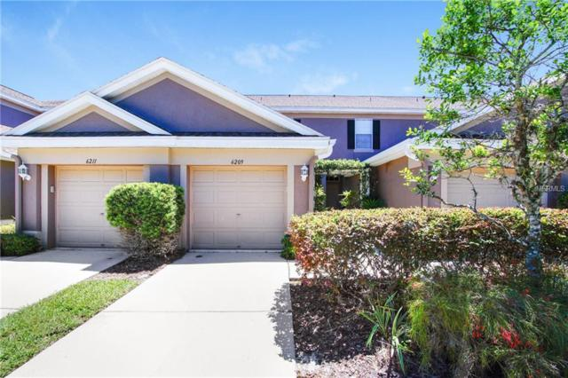 6209 Duck Key Court, Tampa, FL 33625 (MLS #T3169897) :: Cartwright Realty