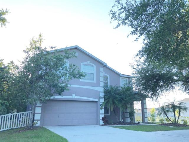 8503 Tidal Bay Lane, Tampa, FL 33635 (MLS #T3169925) :: Team Bohannon Keller Williams, Tampa Properties