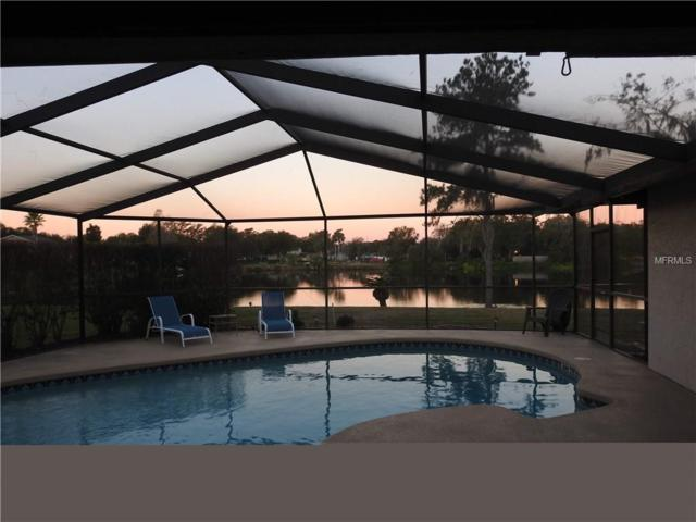 3909 Dunaire Drive, Valrico, FL 33596 (MLS #T3169937) :: Griffin Group