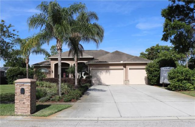 17504 Blessed Place, Lutz, FL 33549 (MLS #T3169943) :: Andrew Cherry & Company