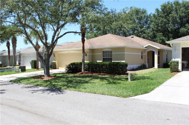 11035 Jenkins Court, San Antonio, FL 33576 (MLS #T3169945) :: Team Bohannon Keller Williams, Tampa Properties