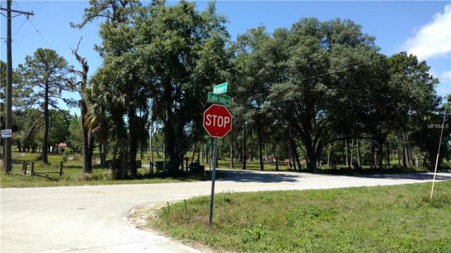 0 Lake Iola Road, Dade City, FL 33523 (MLS #T3169946) :: Florida Real Estate Sellers at Keller Williams Realty