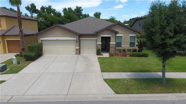 2118 Landside Drive, Valrico, FL 33594 (MLS #T3169952) :: Welcome Home Florida Team