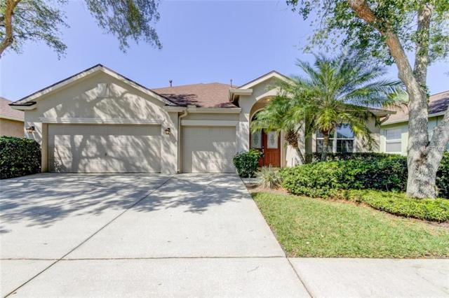 10513 Castleford Way, Tampa, FL 33626 (MLS #T3169959) :: Team Bohannon Keller Williams, Tampa Properties