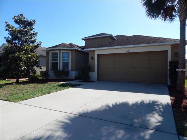 7025 Forest Mere Drive, Riverview, FL 33578 (MLS #T3169983) :: Team Bohannon Keller Williams, Tampa Properties