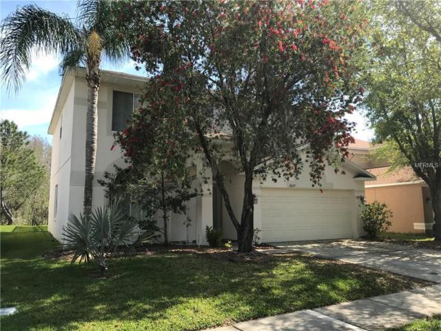 18129 Sandy Pointe Drive, Tampa, FL 33647 (MLS #T3169988) :: Team Bohannon Keller Williams, Tampa Properties