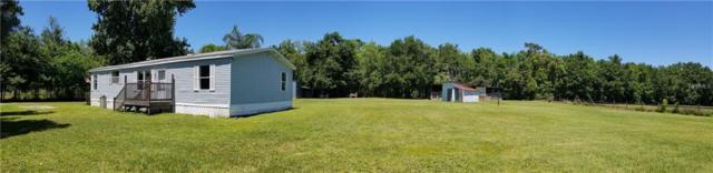 30531 Gar Drive, Wesley Chapel, FL 33545 (MLS #T3169989) :: Team Bohannon Keller Williams, Tampa Properties
