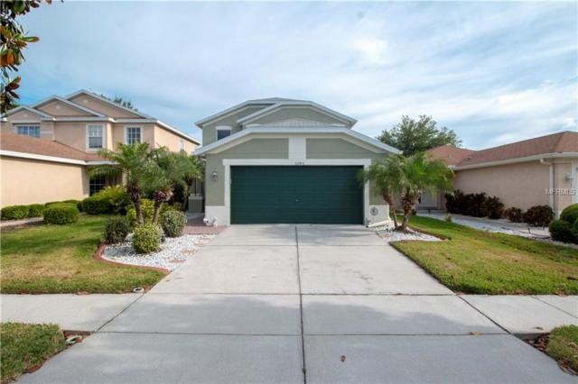 11245 Cocoa Beach Drive, Riverview, FL 33569 (MLS #T3169997) :: Godwin Realty Group