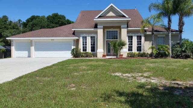 10525 Spring Lake Drive, Clermont, FL 34711 (MLS #T3170017) :: Dalton Wade Real Estate Group