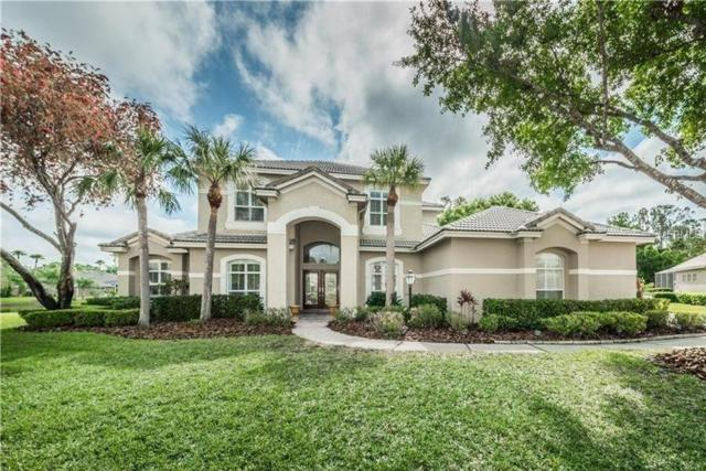 12306 Marblehead Drive, Tampa, FL 33626 (MLS #T3170129) :: Myers Home Team