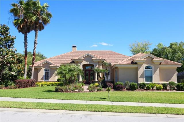 13848 Thoroughbred Drive, Dade City, FL 33525 (MLS #T3170195) :: Team Bohannon Keller Williams, Tampa Properties